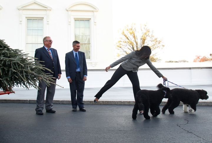 Sunny and Bo Obama seemed pretty excited.