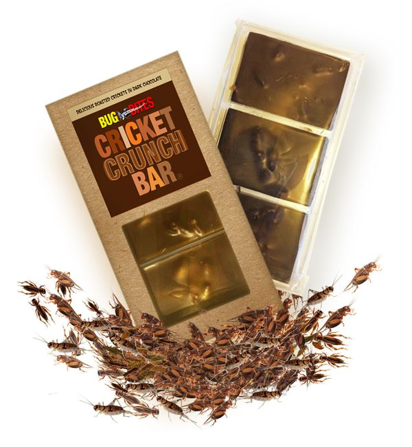 "Most candy bars are, by law, allowed to have a certain amount of insect parts in them. The <a href=""http://www.entomarket.com"