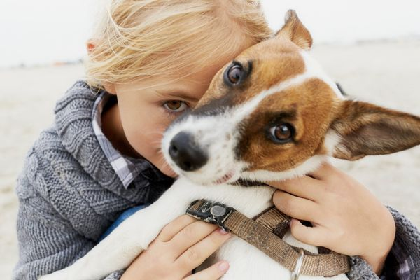 "<a href=""http://www.shop.dnamydog.com/"">DNA My Dog breed ID test kit</a>helps unlockclues to the unique genetic b"