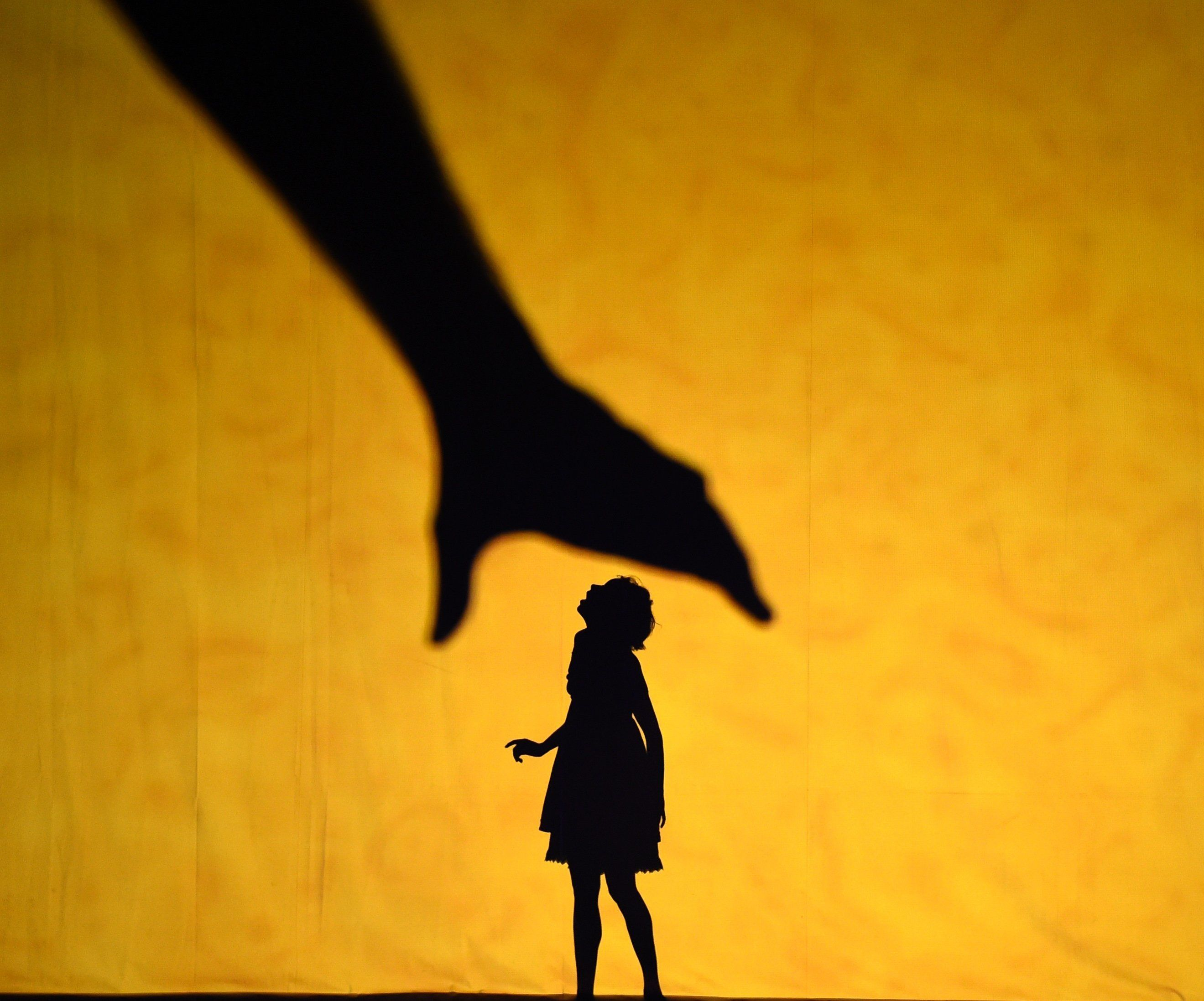 Dancers with Pilobolus perform a scene during a dress rehearsal for the American premiere of Piloboluss 'Shadowland'  at NYU Skirball Center for the Performing Arts November 20, 2015. The dancers uses shadow theater technology to create a mysterious universe where Pilobolus dancers transform into monsters, dogs, elephants, giants and more.         / AFP / TIMOTHY A. CLARY        (Photo credit should read TIMOTHY A. CLARY/AFP/Getty Images)