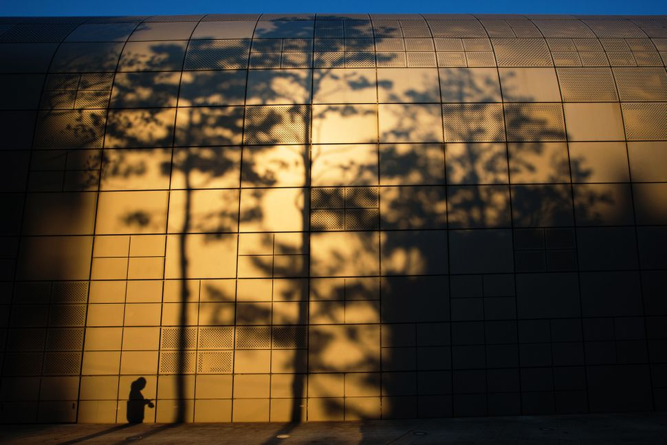 The shadows of a woman and nearby trees are cast on the wall of Dongdaemun Design Plaza in Seoul, South Korea, on Sunday, May
