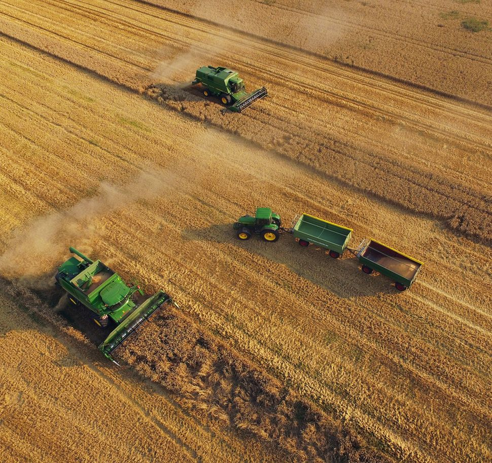In this aerial view, combines harvest summer wheat at a cooperative farm on Aug. 14, 2015, near Grossderschau, Germany.