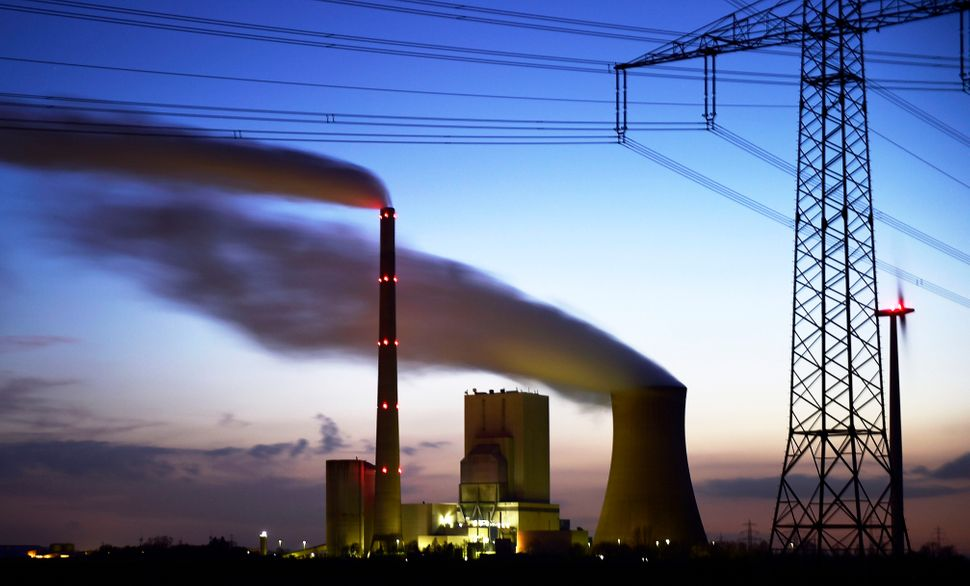 Steam rises from cooling towers at the coal-fired Kraftwerk Mehrum power plant at Haemelerwald on March 10, 2015, near Sehnde