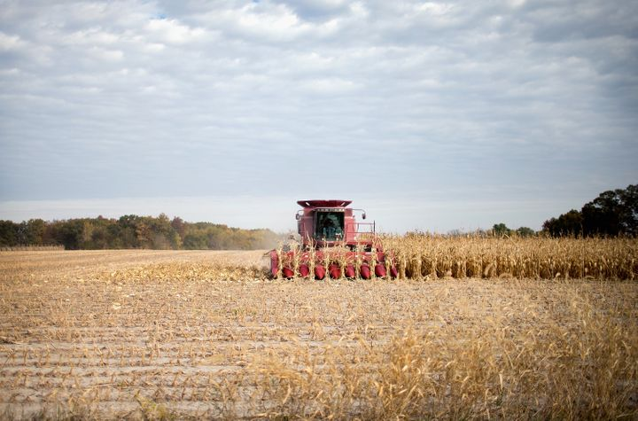 Farmer Rick Wirt harvests corn on October 22, 2015 near Burlington, Iowa.