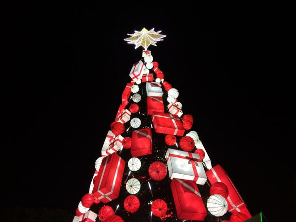 SM North, the fifth-largest mall in the world, unveiled its 50-foot Christmas tree on Nov. 6.