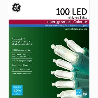 "<i><a href=""http://www.homedepot.com/p/GE-Energy-Smart-Colorite-100-Light-LED-Warm-White-Mini-Light-Set-97136HD/203267278"" target=""_blank"">GE Energy Smart Colorite 100-Light LED Light Set, $19.98</a></i>"