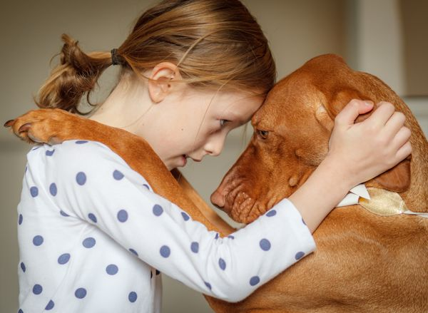 Parents may not have needed a study to tell them that dogs can do good things for children's mental health, but they got one