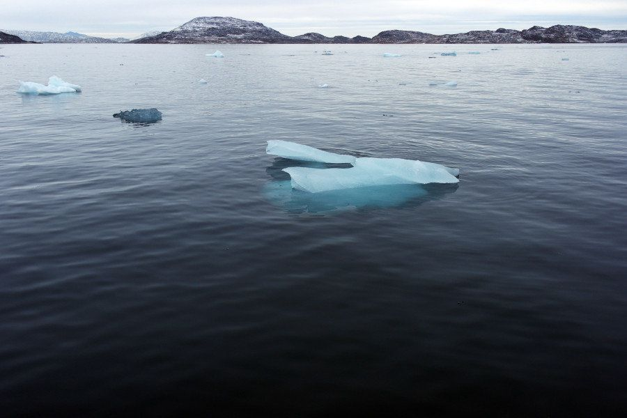 Pieces of ice from the Greenland ice sheet float in Nuup Kangerlua. The Nuup Kangelua was chosen for logistical reasons. This