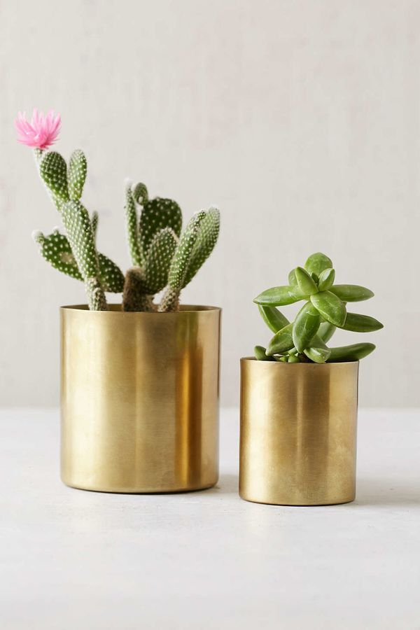"""Small Gold Planter, $8 at <a href=""""http://www.urbanoutfitters.com/urban/catalog/productdetail.jsp?id=34838326&amp;category=A_"""