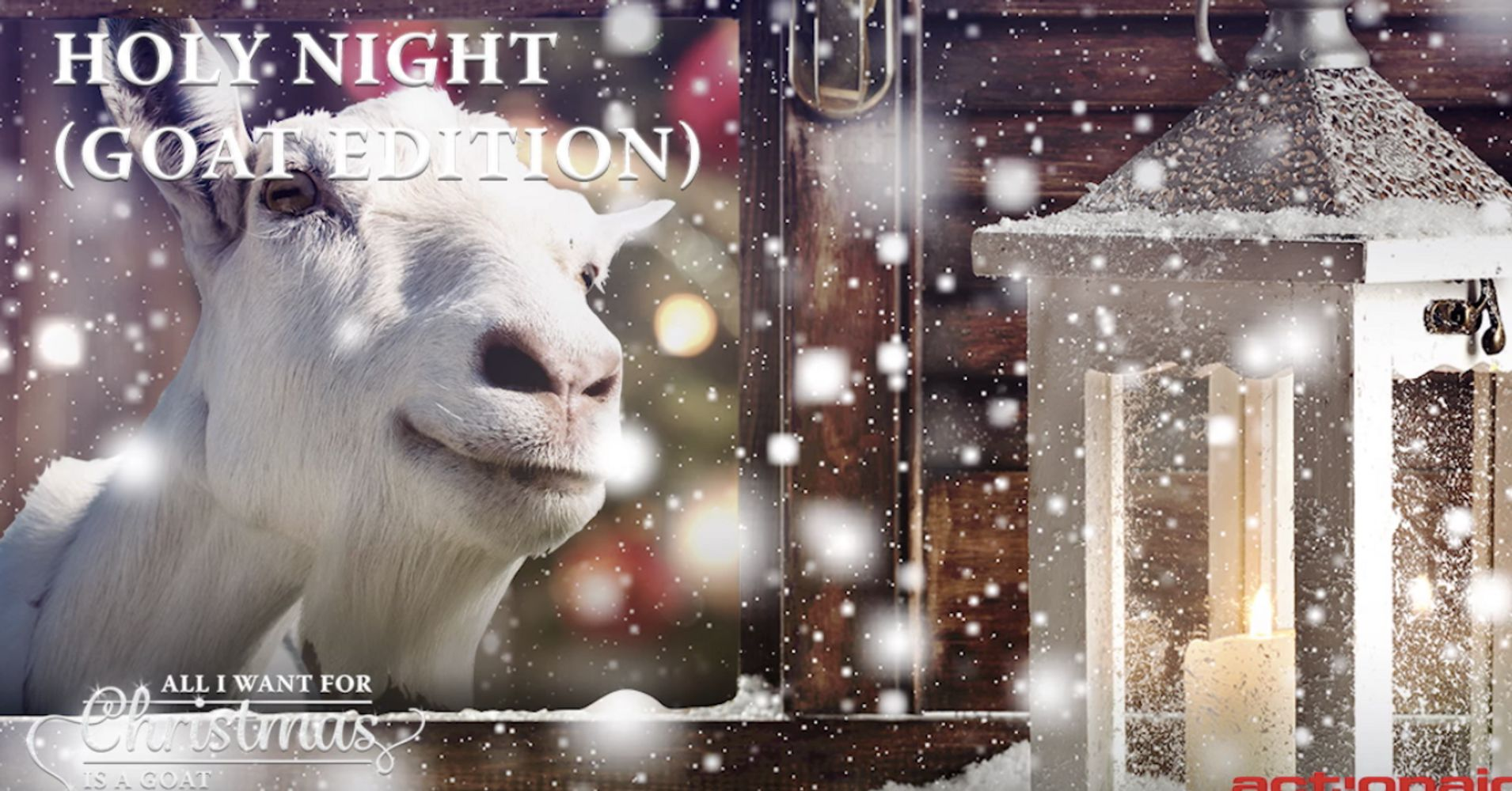 Goats Singing Christmas Carols Is The Holiday Album You Didn\'t Know ...