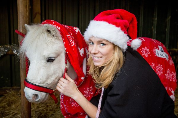 Charlotte Denn, seamstress, with Daffy the Shetland Pony. Preparing for the cold snap: Ascot Race course unveils it's Christm