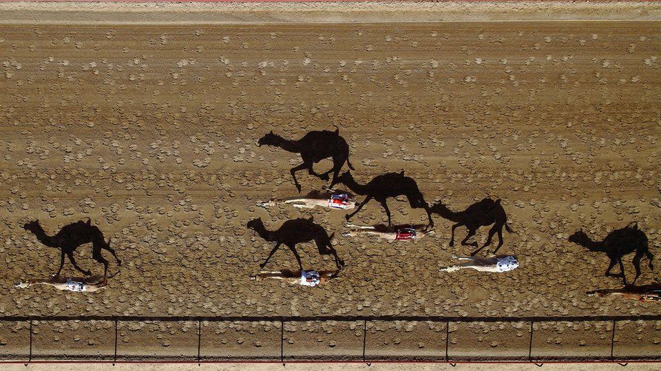 Al Marmoun Vertical Race Track, Dubai.