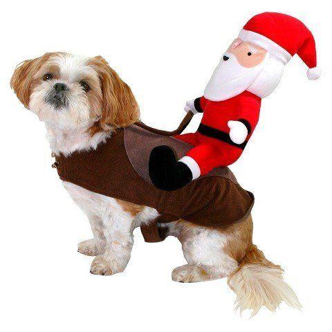 "<i><a href=""http://www.target.com/p/santa-rider-pet-costume/-/A-15731074#prodSlot=_1_19"" target=""_blank"">Santa Rider Pet Cost"