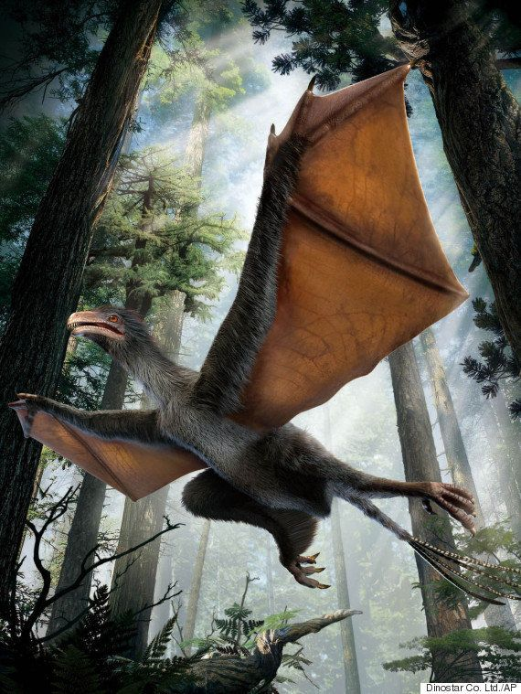 "Yi qi is Mandarin for ""strange wing,"" which is appropriate since&nbsp;this <a href=""https://www.huffpost.com/entry/dinosaur-b"