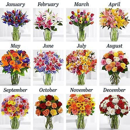 """<a href=""""http://www.proflowers.com/product/3-Months-of-Flowers-2202?productgroup=fbm&amp;sk=&amp;ref=organicgglunkwn&amp;prid"""
