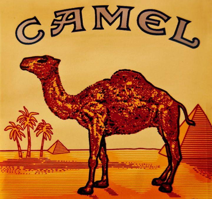An old Camel logo.