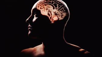 Human brain projected on man's head