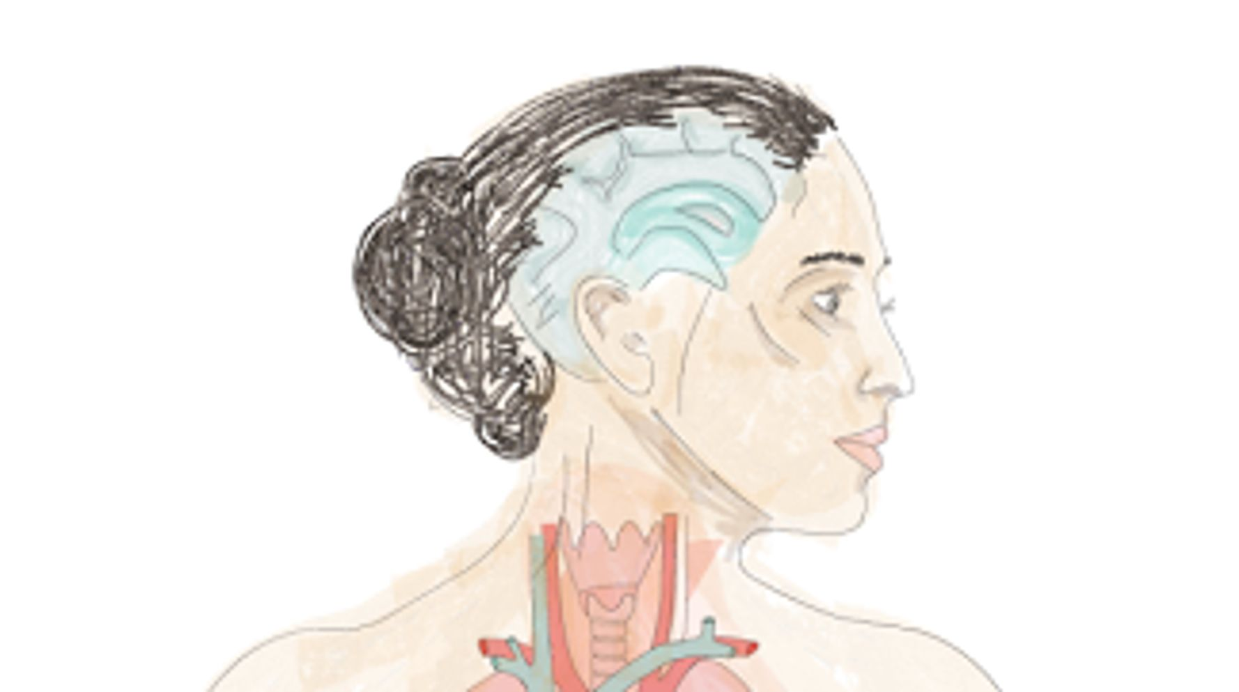12 Amazing Things We Learned About The Human Body In 2015