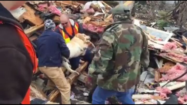 Sawyer being lifted from the wreckage.