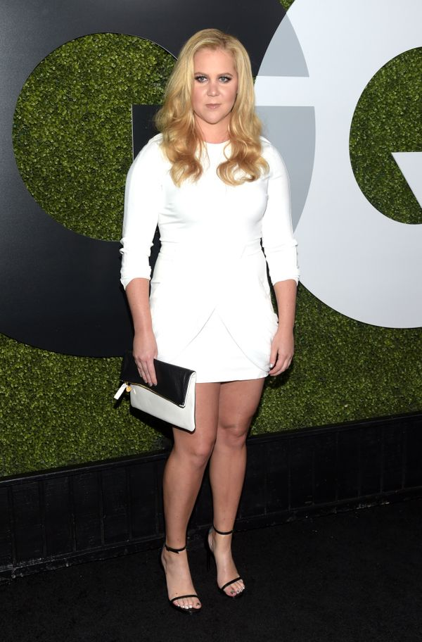 Comedienne Amy Schumer is employing humor, no-nonsense legislation -- whatever it takes -- to help bring stricter gun control