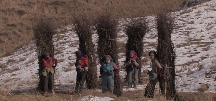 Rural women in the Himalayas carry wood bundles home over snowy pathways.