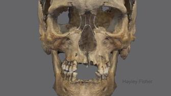 A reconstruction of the bones of a man who may have been a pirate in 16th-century Scotland.