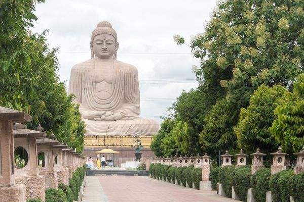 The famous Bodhi Tree in Bodh Gaya, India is believed to be the site at which Siddhartha Gautama, later known as Buddha, <a h