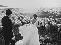 50 Award-Winning Wedding Photos That Will Blow You Away