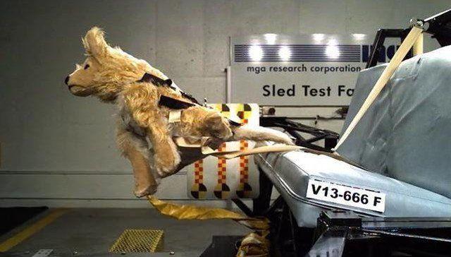 D E F C E D E on Dog Car Safety Harness