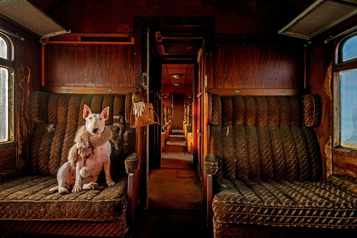 Claire traveling in an abandoned train in Belgium.
