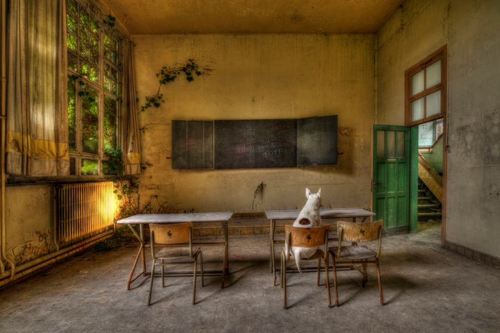 Claire studying in an abandoned school in Belgium.