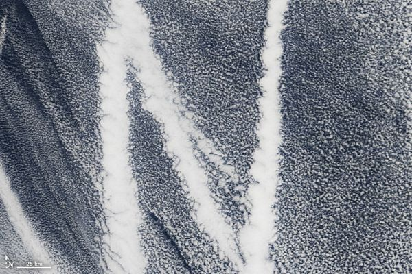 The letter N, as shown by a satellite image of ship emissions tracks formed over the Pacific Ocean (March 4, 2009).