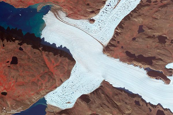 The letter X, as played by a corner of Leidy Glacier in Greenland, in a false-color satellite image (August 7, 2012).