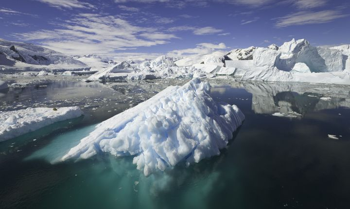Water dripping off of icebergs in the Antarctic Ocean contains nutrients for phytoplankton, which can help abs
