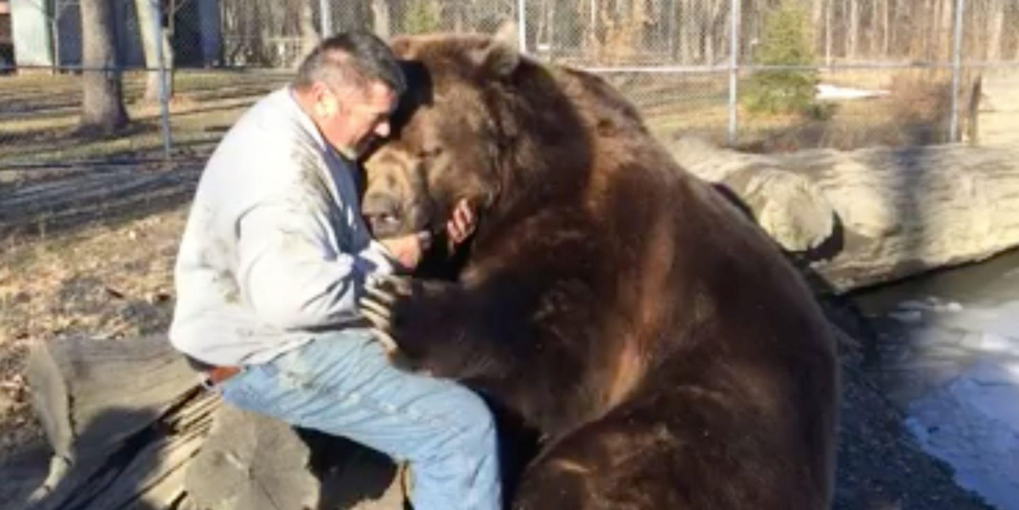 Fearless Man Sees 1500 Pound Kodiak As Big Cuddly Teddy