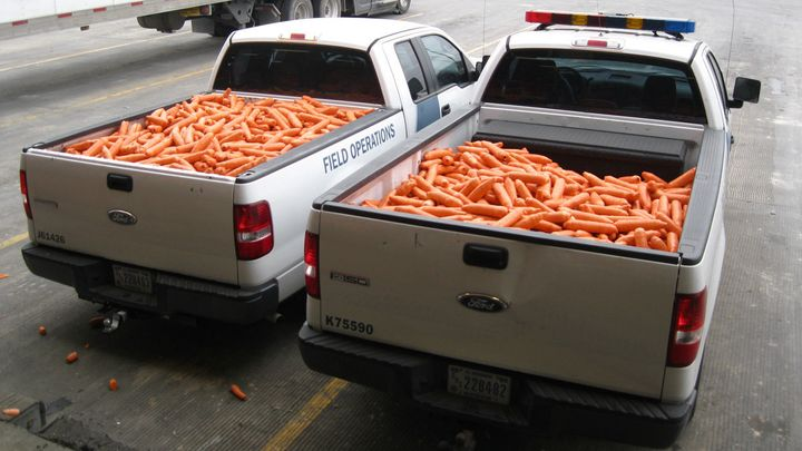 CBP agents seized alleged marijuana disguised as fresh carrots on Dec. 10.