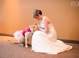 Sweet Photo Captures The Bond Between A Bride And Her Service Pup
