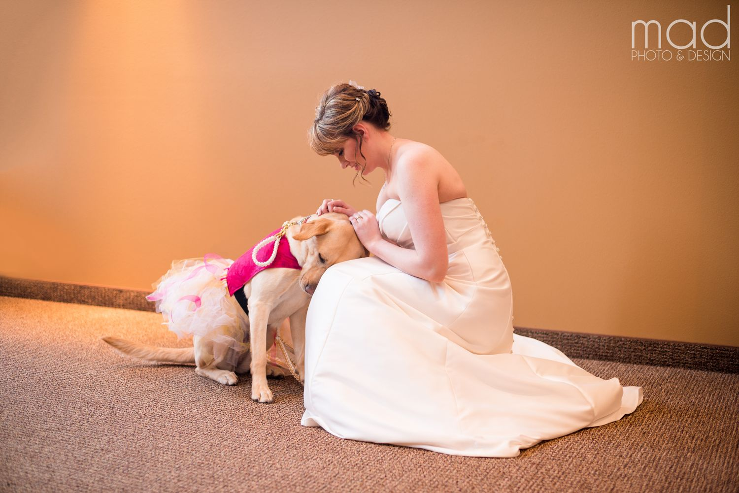 This bride and her 3-year-old yellow lab are best friends fur-ever.