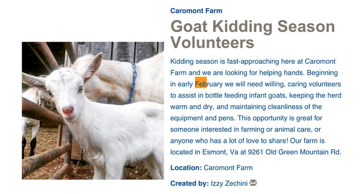 Caromont Farms in Esmont, Virgina put up an online ad seeking volunteers to feed, cuddle and love their newborn goats.
