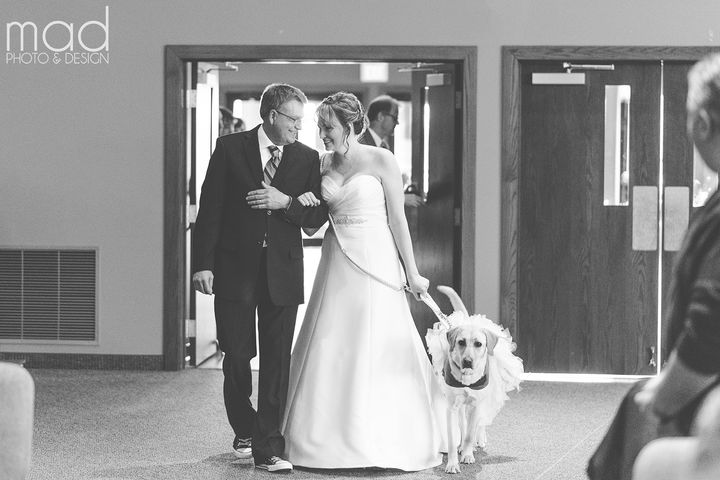 Bella and the bride's dad Kurt walking her down the aisle.