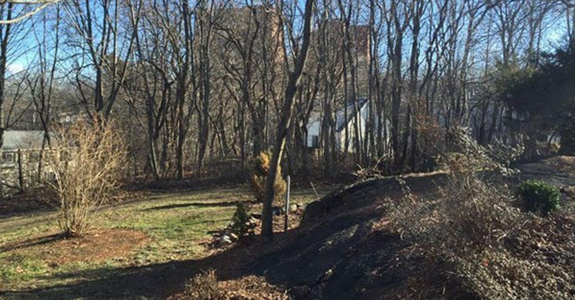 Salem Witch Trials Execution Site Found, And Its Behind A
