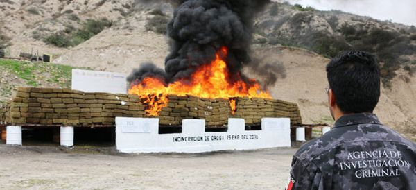 WATCH: Mexican Authorities Incinerate 20 Tons Of Seized Narcotics
