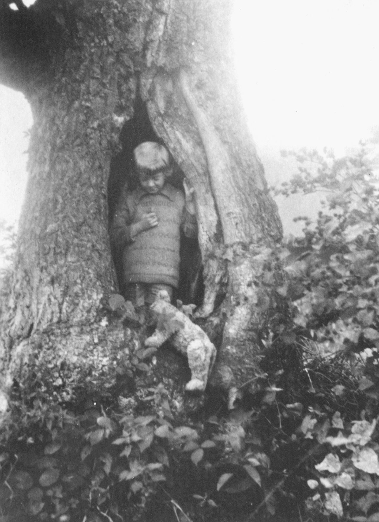 Christopher Robin with Pooh, Piglet, and Roo in the original walnut tree.