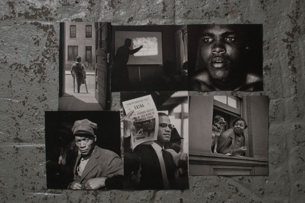 Collage by Peter Beard, 2013. Photographs by Gordon Parks.