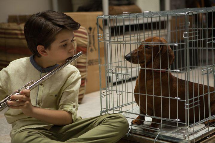 Sundance So Far: 'Wiener-Dog,' Bizarre Horror Comedy 'The Greasy