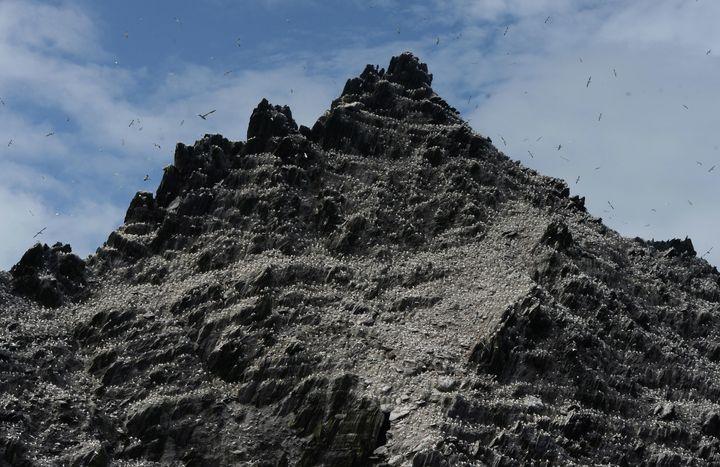The rugged landscape ofSkellig Michael.