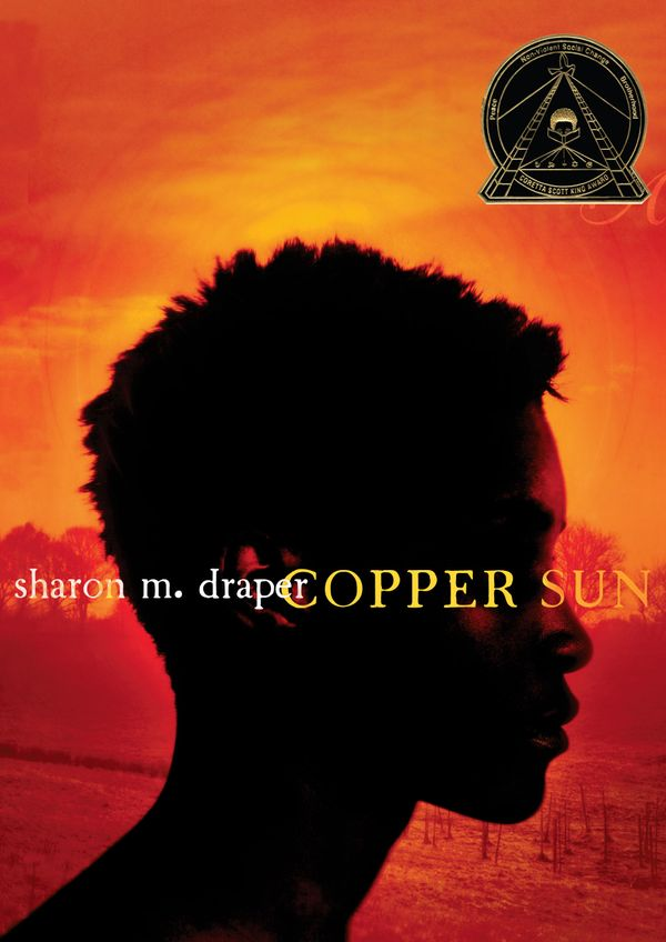 Sharon M. Draper's novel, an unflinching examination of the slave trade, is appropriate for somewhat older readers. It follow
