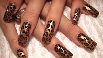 Leopard/jaguar spots.