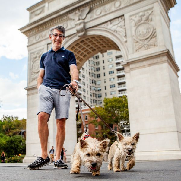 "<strong>Mark + Charlie &amp; Jack&nbsp;(Washington Square Park, Manhattan)</strong><br>""They are very good at eating crab leg"