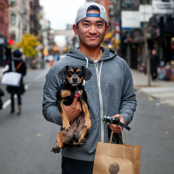 "<strong>Gerard + Jackson&nbsp;(LES, Manhattan)</strong><br>""He is me in dog form."""